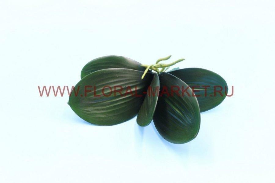 З4634 Лист орхидеи с кореш. h=25см.