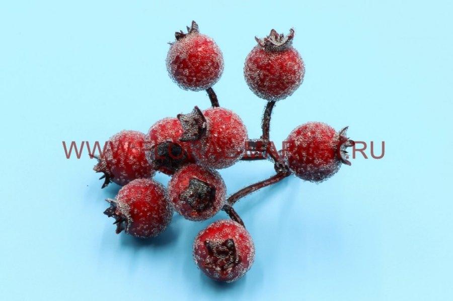 В1724 Ветка ягодок шиповника в сахаре