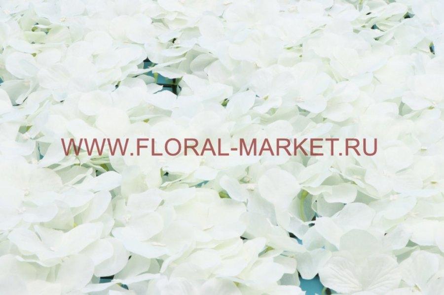 Б1035 Панно из цветков гортензии 40х60см.