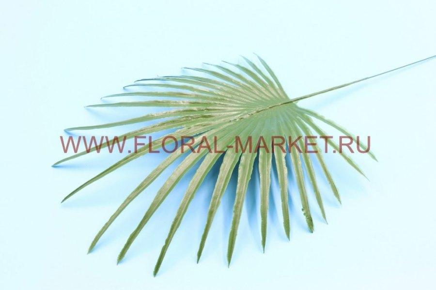 З152 Лист пальмы круглый малый