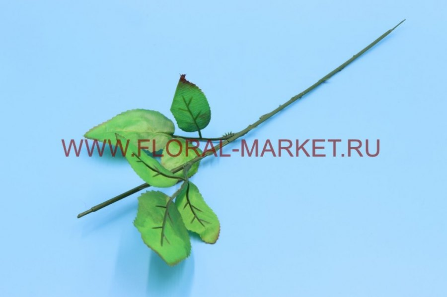 О107 Нога розы 2 листа, h=45см.