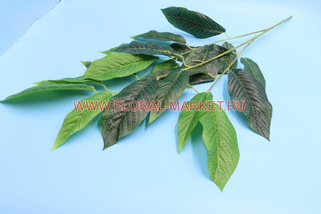 В2314 Ветка для дерева манго 14 л. в.-85 см.