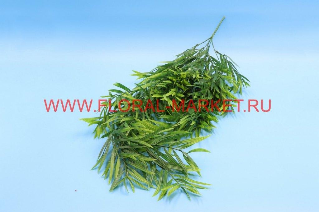 З4641 Куст бамбук ампельный 5в. h=85см.
