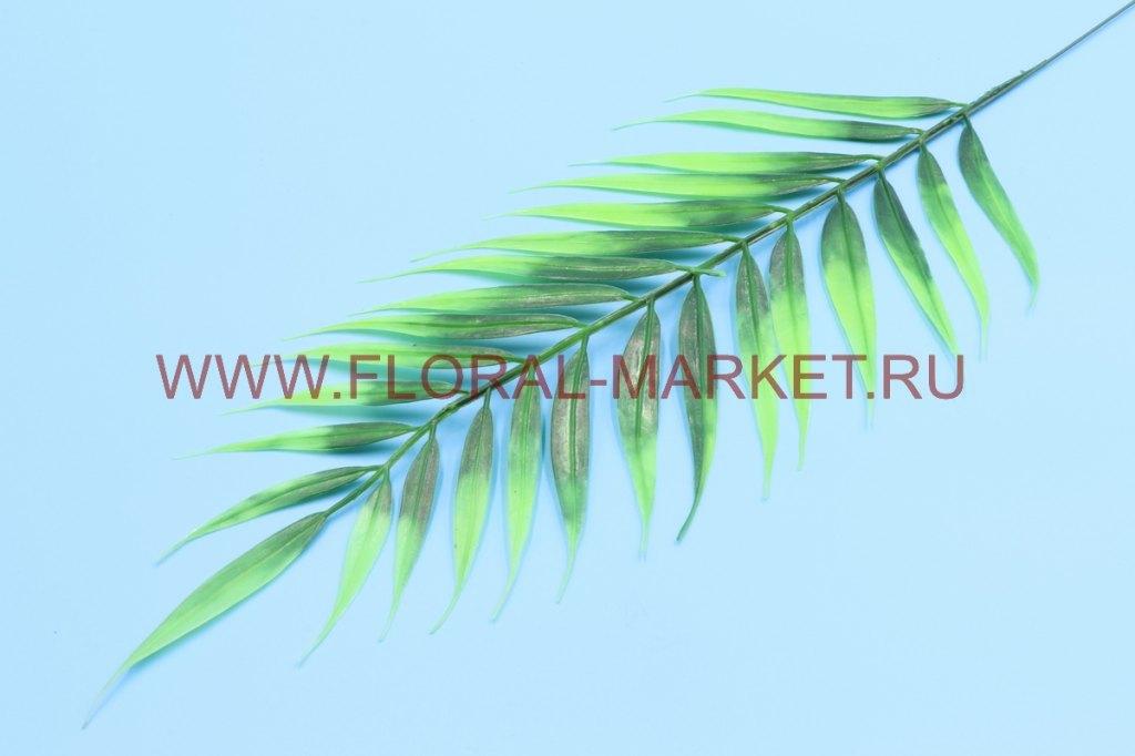 З5108 Лист пальмы длинный п/м