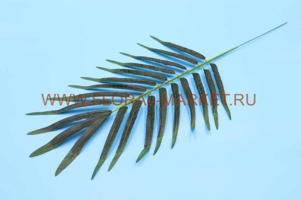 """З4492 Лист финик. пальмы """"Эмин"""" в.-55см."""