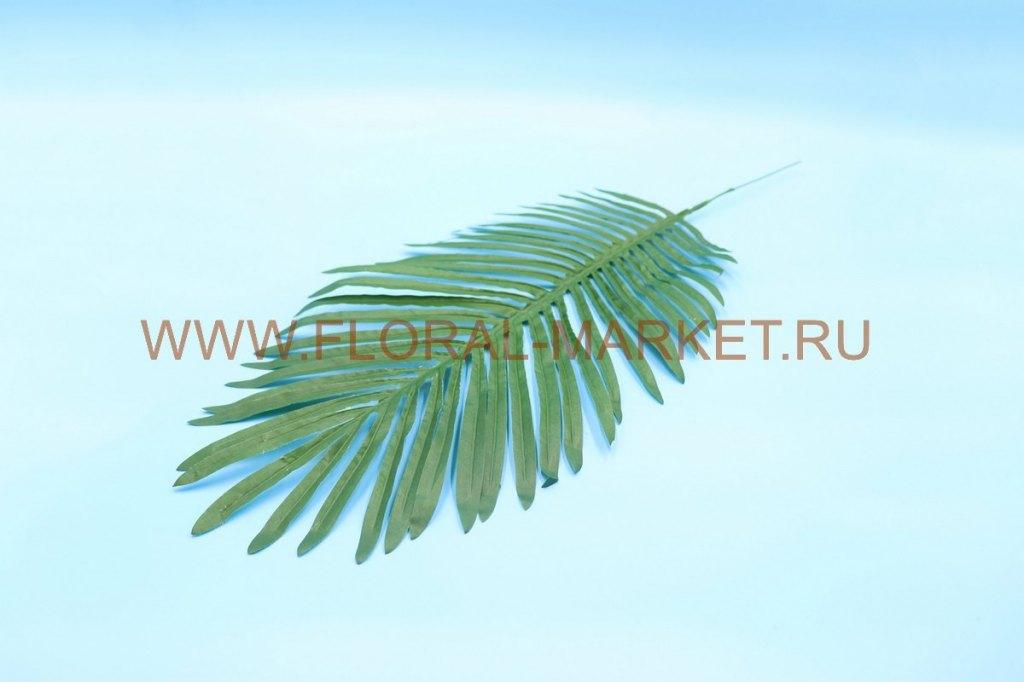З4392 Лист финиковой пальмы в.-70см.