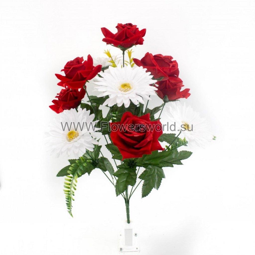 Б669 Букет роза бархат+гербера