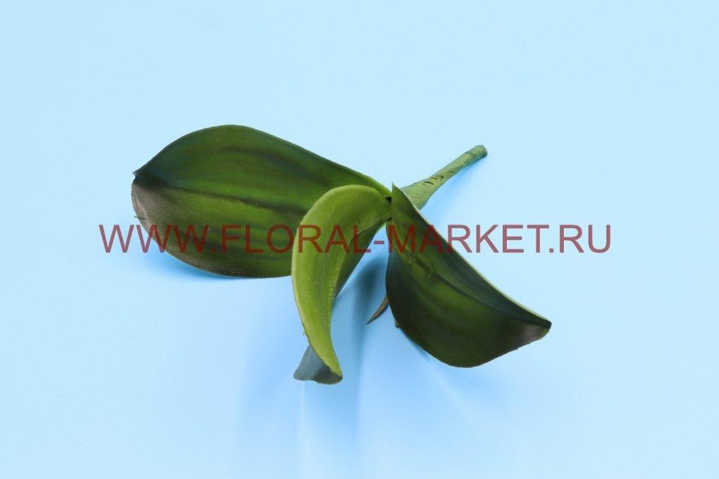 З4746 Лист орхидеи с кореш.3л.h=22см.