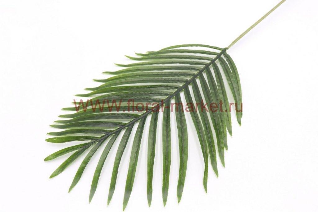 З1568 Лист финиковой пальмы h=85см.