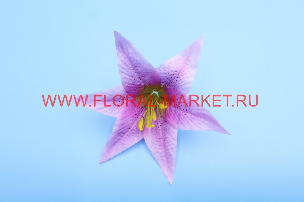Г3053 Голова лилии с росой d=16см.