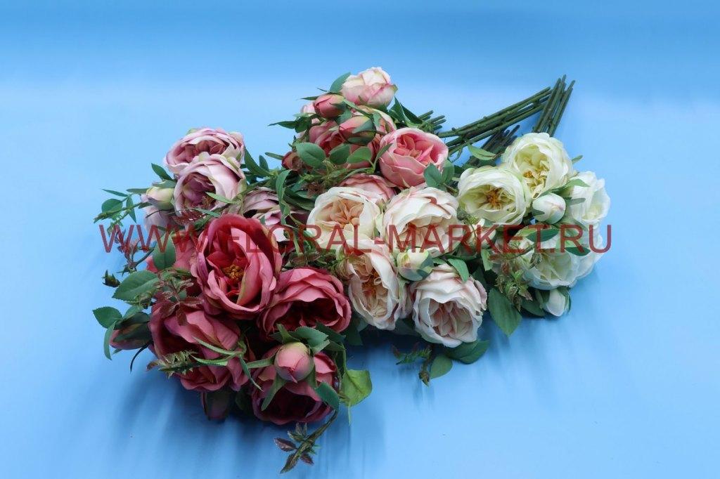 "Б6143 Срез пион. роза ""Джульетта"" 7г.+3б. в.-48см."