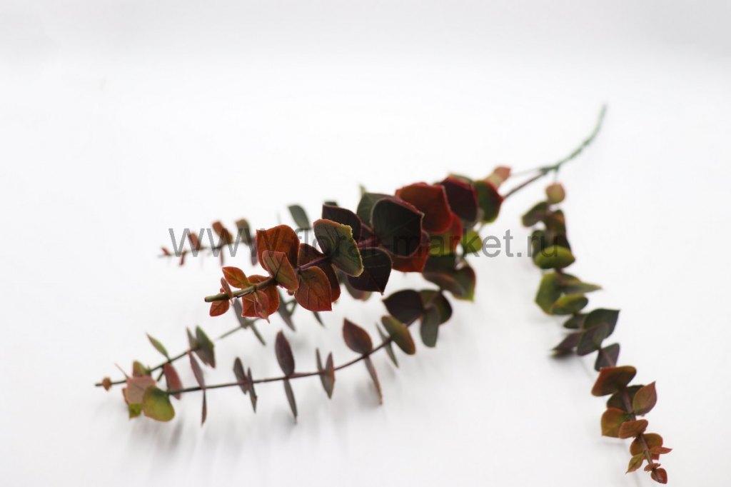 В292 Ветка эвкалипт цветной мелкие листья