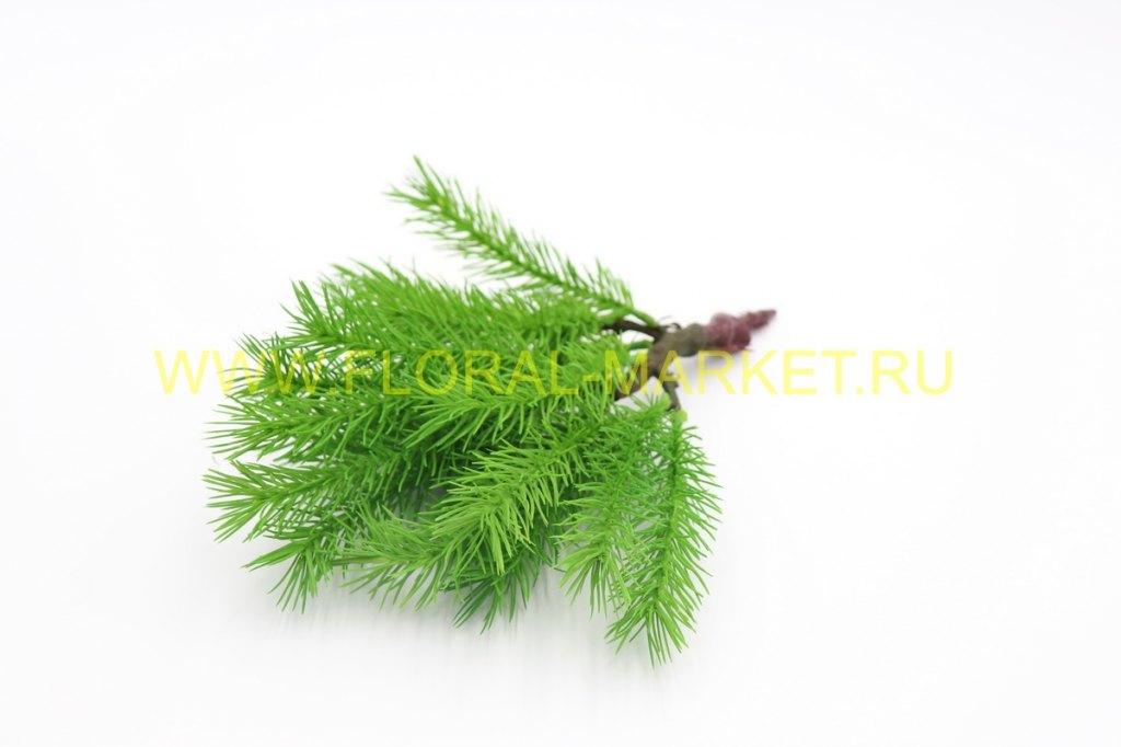 З1015 Ель декоративн.карликовая с корнями Н30см.