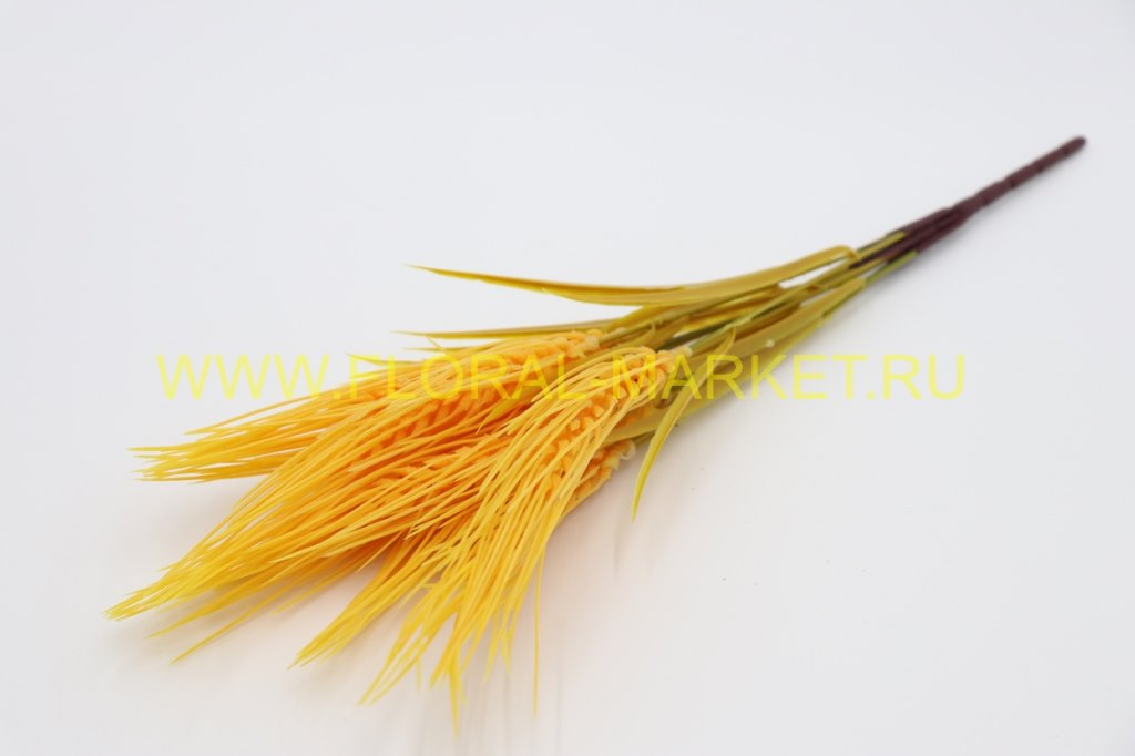 """З4421 Куст пшеница """"Ялла"""" 9г. в.-45см."""