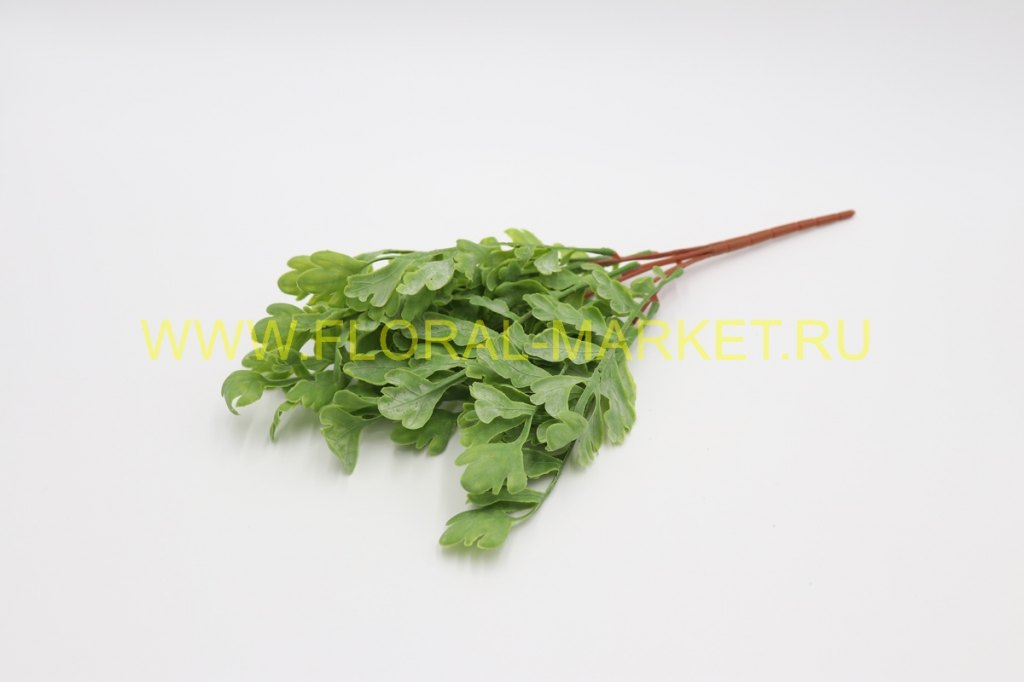 З1622 Куст оленьи рожки зеленые