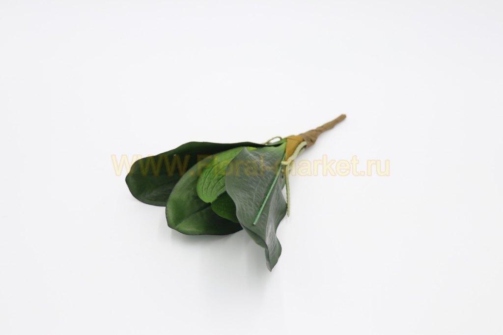 """З4213 Лист орхидеи """"Монклер"""" в-30см."""