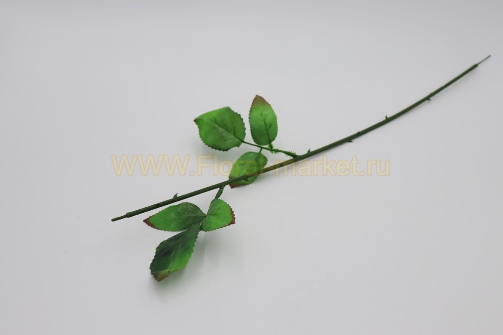 О1219 Нога розы с двумя листами h=61см.